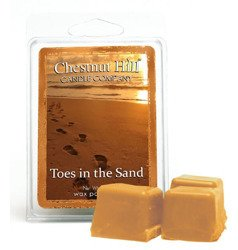 Chestnut Hill Toes In The Sand Wosk Zapachowy 85g