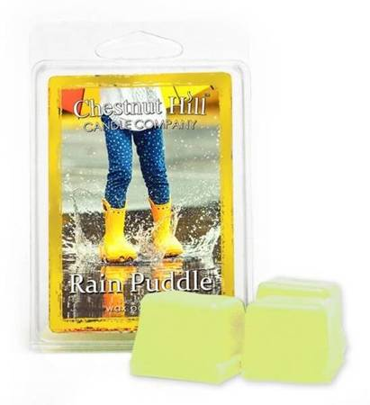 Chestnut Hill Rain Puddle Wosk Zapachowy 85g